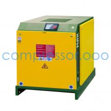Винтовой компрессор Ekomak DMD 30 C (10 атм)